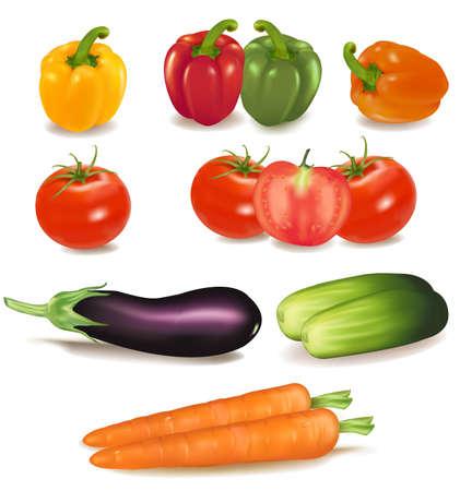 El gran colorido grupo de verduras maduras. Vector de calidad fotográfica.