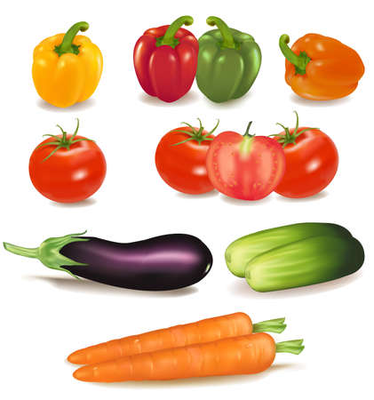 green and purple vegetables: The big colorful group of ripe vegetables. Photo-realistic vector.