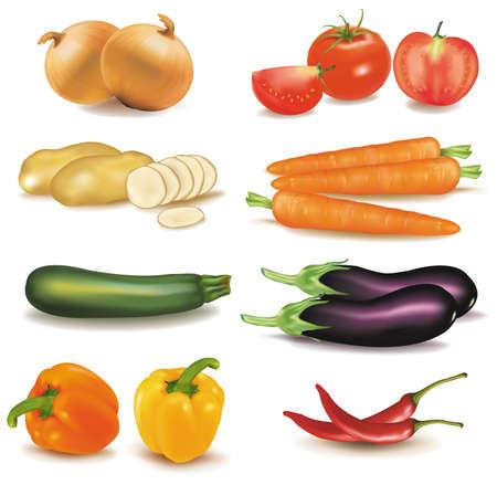 El gran colorido grupo de verduras. Vector de calidad fotográfica.