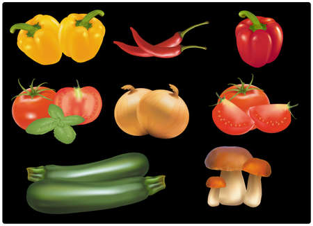 The big colorful group of ripe vegetables. Photo-realistic vector.  Vector