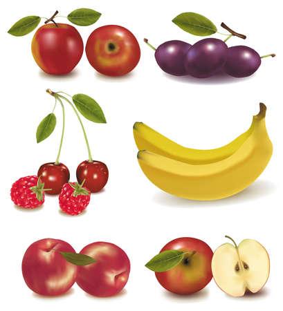Foto-realistische vector illustratie. Perziken, pruimen, appels, kersen, banaan Vector Illustratie