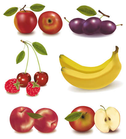 photorealistic: Photo-realistic vector illustration. Peaches, plums, apples, cherries, banana Illustration