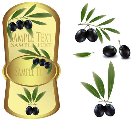 Photo-realistic vector illustration. Yellow label with black olives  Stock Vector - 9635360