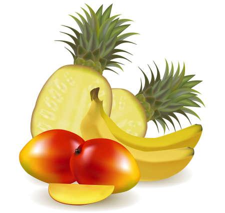 pineapples: Ilustraci�n vectorial de calidad fotogr�fica. Colorido grupo de fruta fresca con pi�as