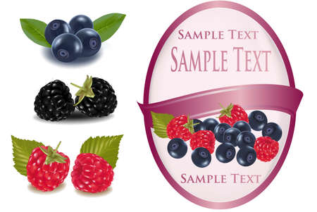 blueberry: Group of berries. Pink label with some berries.