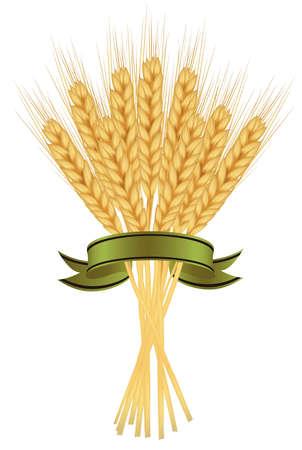centeno: Espigas de trigo y cintas en blanco