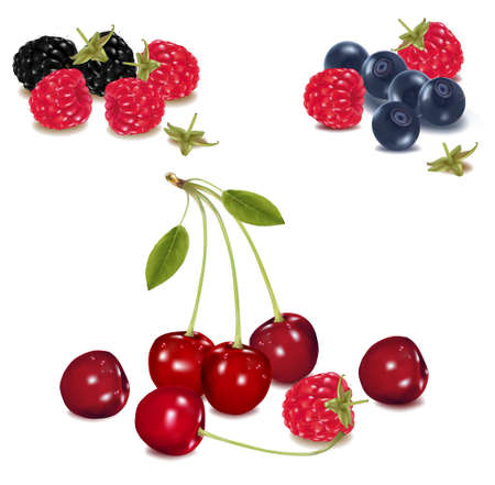 organic raspberry: Group of berries.  Illustration