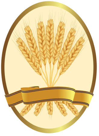 whole grain: agricultural