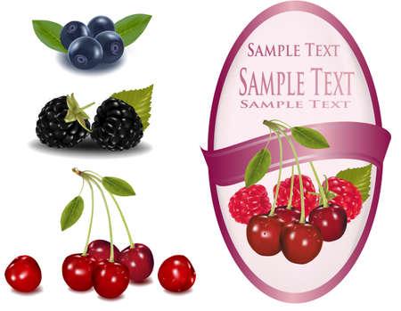 moras: Etiqueta rosa con cerezas rojas y frambuesas con hojas  Vectores