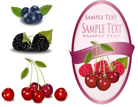 blueberries: Pink label with red cherries and raspberries with leaves