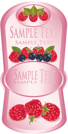 Pink label with group of fruit  Vector