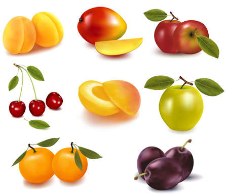 Apricots, pears, apples and tangerine Vector