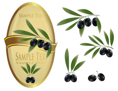 Yellow label with green olives and a ribbon.  Vector