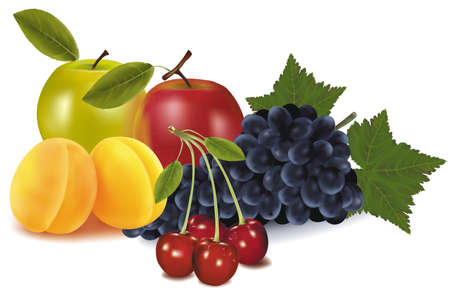 Group of fruit.  Vector