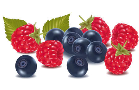 Group of cherries and blueberries with leaves. Vetores