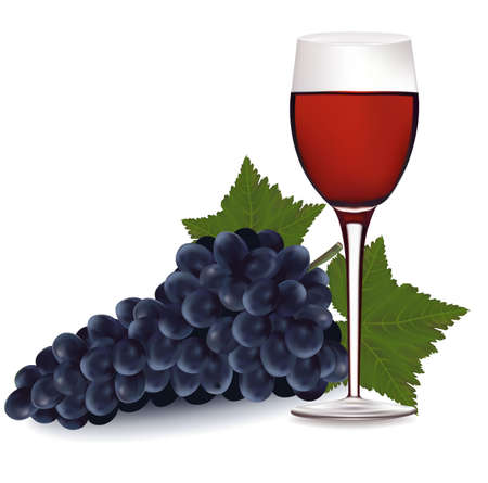 Glass of red wine and a grapes with leaf.  Vector