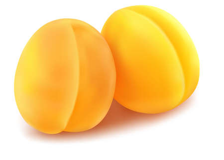 fragrances: the ripe apricot fruit.