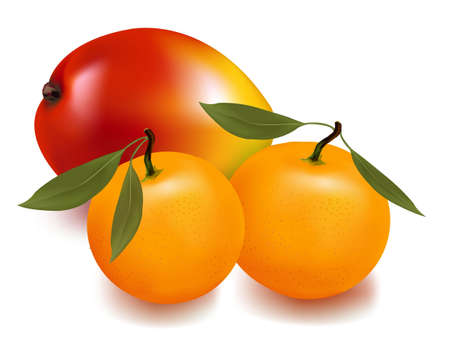 Mango and two tangerines with leaves.