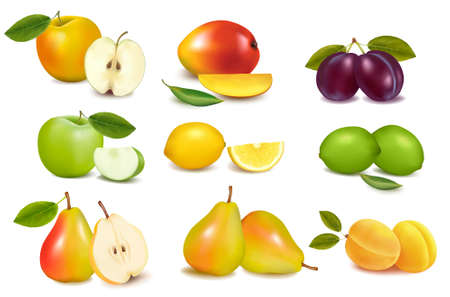 mango slice: Group of different sorts of fruit. Vector.