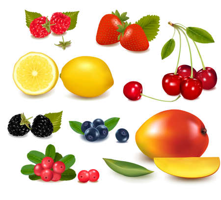 Group of cranberries, blueberries, cherries, raspberries and exotic fruit. Photo-realistic vector illustration.