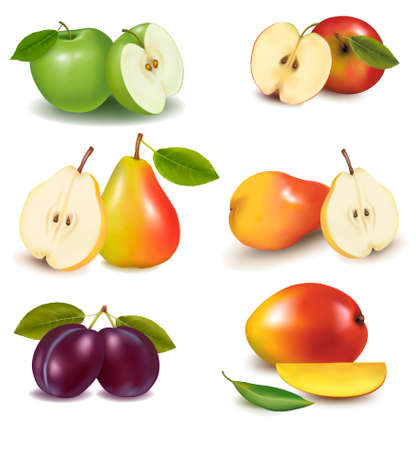 Group with different sorts of fruit. Vector Stock Vector - 9924160