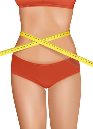 measured: Fit young woman body with measured waistline. Concept of diet. Vector.