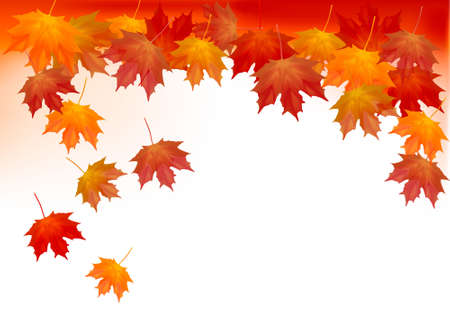 Autumn background with colorful leafs. Vector illustration.  Illustration