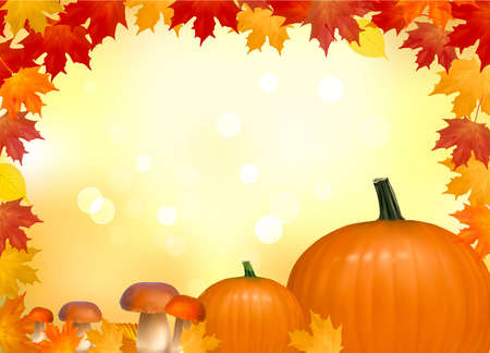 Autumn background with mushrooms pumpkins. With copy space. Vector illustration.