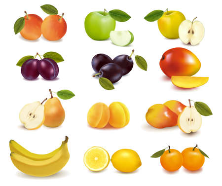 vine pear: Group with different sorts of fruit. Vector.  Illustration