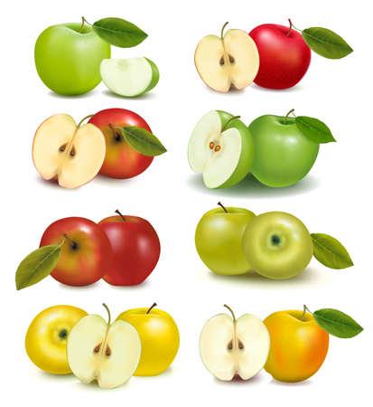 manzana roja: Conjunto de frutos rojos y verde manzana con cortar y hojas verdes. Ilustración vectorial.