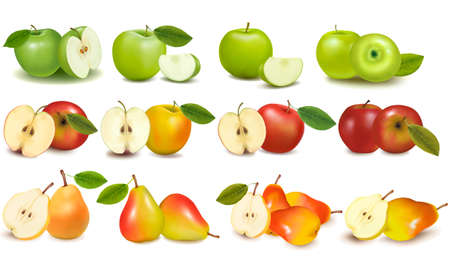 green and red: Set of red and green apple fruits with cut and pears. Vector illustration.