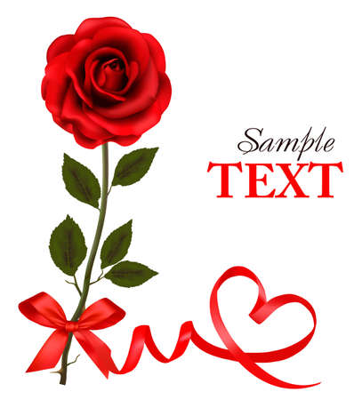 single red rose: Valentine`s day card. Red roses and gift red bow. Vector illustration.