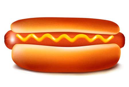 Vector illustratie van hot dog met ketchup en mosterd