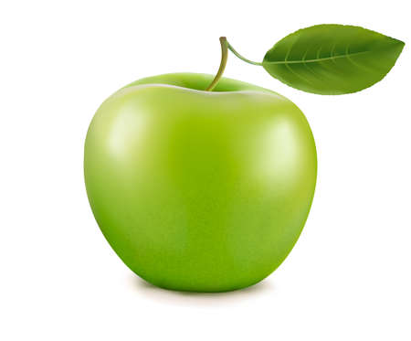 Fresh green apple with green leafs. Vector. Vector