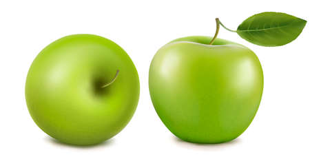 fresh green apples with green leafs. Vector. Vector