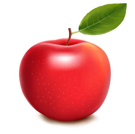 apple leaf: Fresh red apple on white background. Vector Illustration