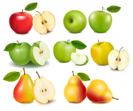 apple slice: Set of red and green apple fruits with cut and pears. Vector. Illustration