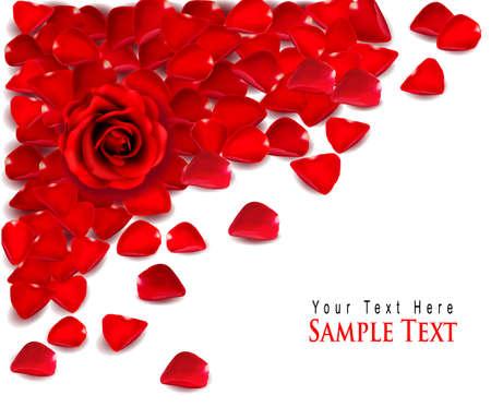 flores de cumpleaños: Antecedentes de pétalos de rosa roja. Vector
