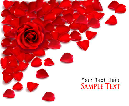 rose petals: Background of red rose petals. Vector