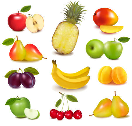 green and purple vegetables: Big group of different fruit. Vector.