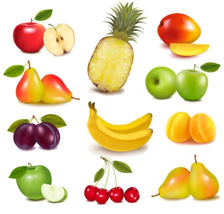 ciruela: Gran grupo de diferentes frutas. Vector.