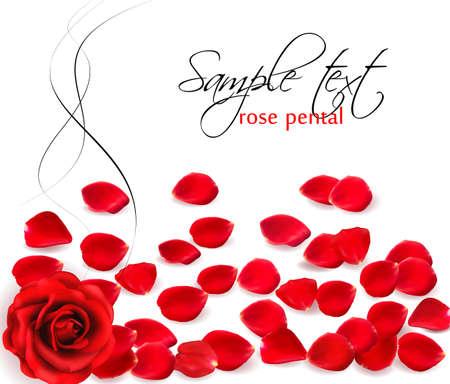 Contexte de pétales de rose rouge. Vector illustration. Vecteurs