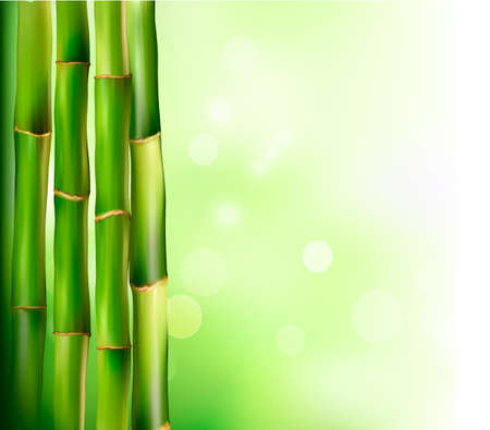 at the edge of: Bamboo background. Vector illustration.  Illustration