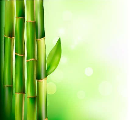 life style: Fond de bambou. Vector illustration. Illustration