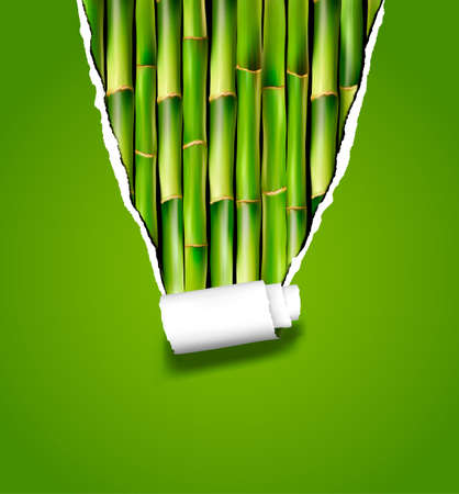 bamboo border: Bamboo background with ripped paper. Vector illustration.