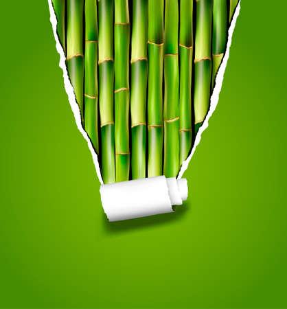 Fond de bambou avec du papier déchiré. Vector illustration.