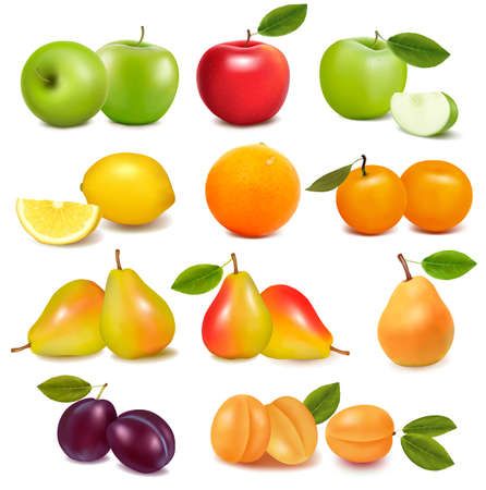 pear: Big group of different fresh fruit  Vector