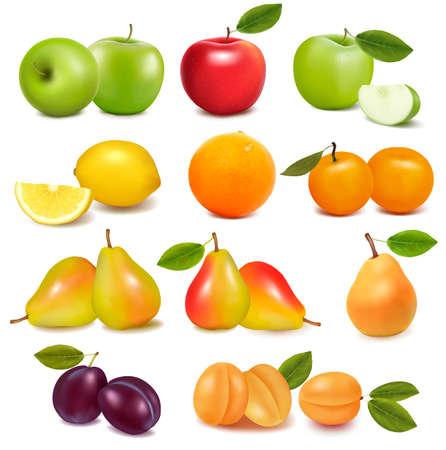 apple leaf: Big group of different fresh fruit  Vector