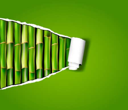 bambou: Fond en bambou avec du papier déchiré Vector illustration Illustration