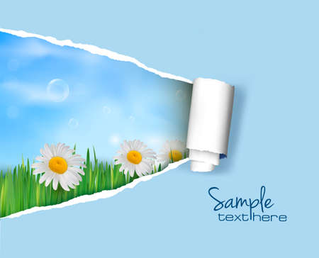 Nature background with ripped paper  Vector illustration Stock Vector - 12491828